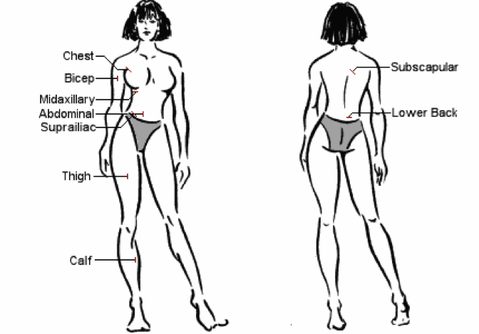 woman_body_fat_diagram